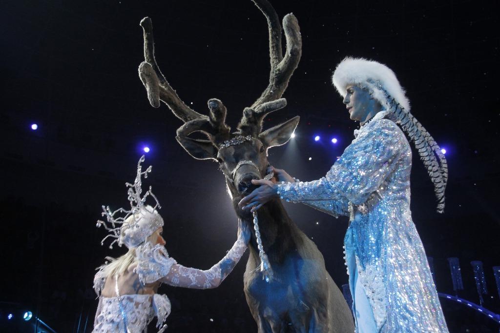 Ярославцы смогли воочию насладится неповторимой феерией шоу «Баронеты»