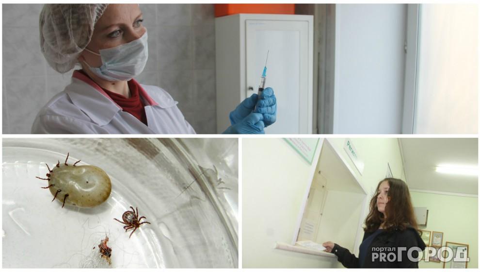 В Ярославской области нашествие клещей, а в городе нет вакцины против энцефалита!