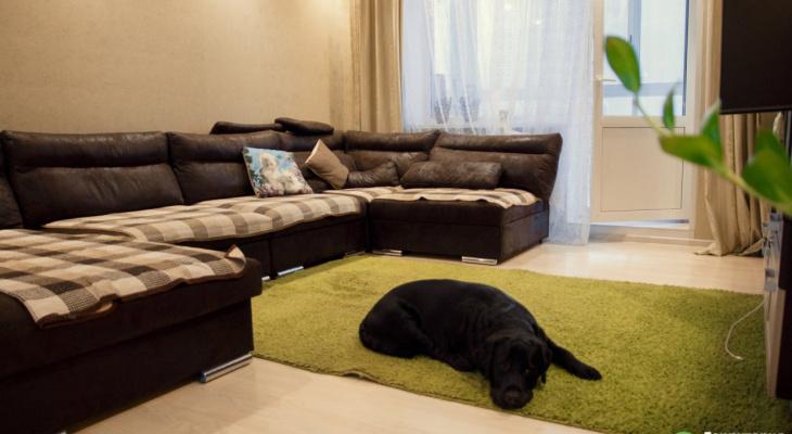 Домашние ковры опасны! Что рассказали в клининговой компании