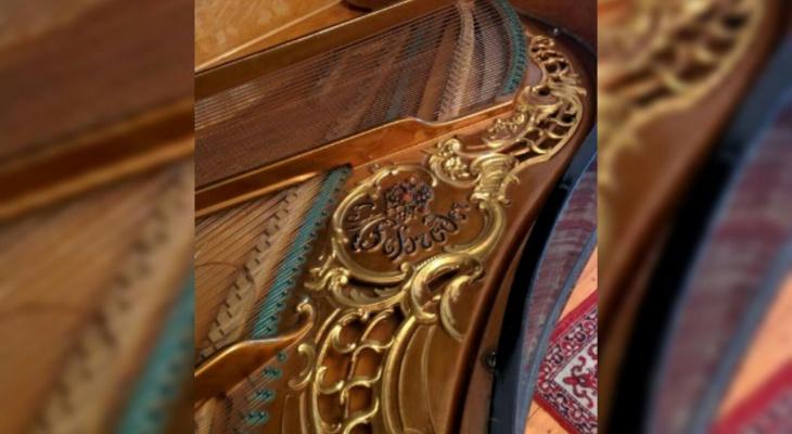 Цена шокирует: редкий музыкальный инструмент нашли в Ярославле