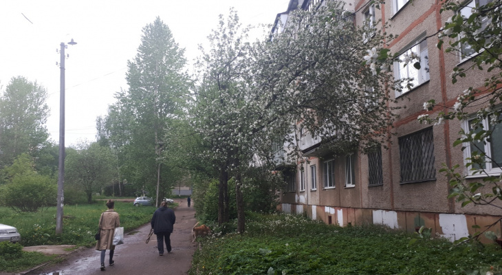Люди, берегитесь: ярославцев предупредили о резком ухудшении погоды