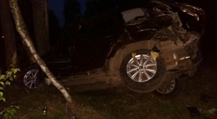 Смерть лося и тяжелые травмы: в страшном ДТП под Ярославлем пострадали два человека