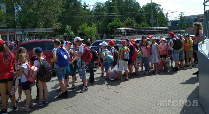 """""""Чтоб жизнь малиной не казалась"""": ярославцы возмущены скачком цен на детские кружки"""