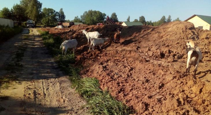 «При первом дожде нас затопит»: жители Шевелюхи бьют тревогу, чтобы спасти свои дома