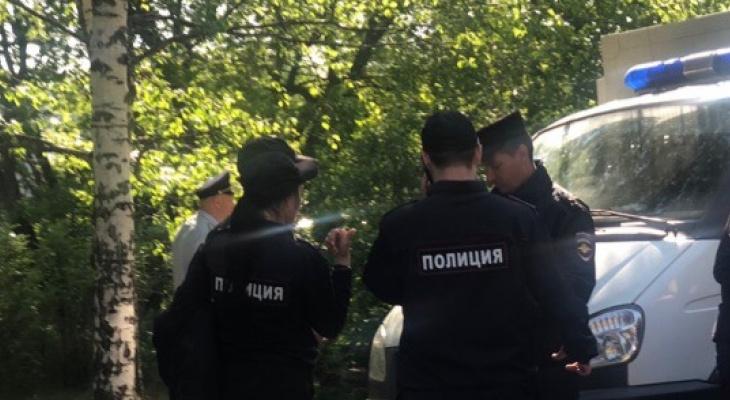Тело 11-летней девочки нашли под Ярославлем