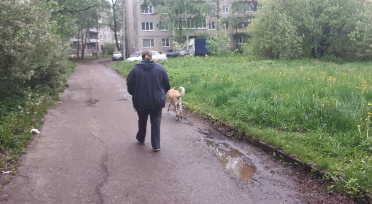 """""""Может еще детей отбирать за долги"""": ярославцев поразило предложение Госдумы"""