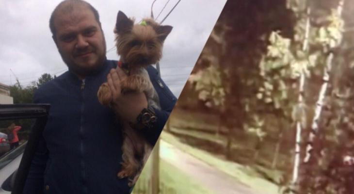 """Хозяин растерзанной собаки о трагедии в Ярославле: """"Дело стоит на месте"""""""