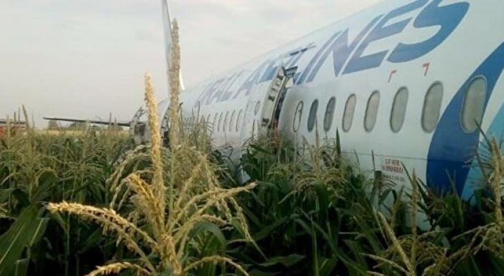 Думали, не выживут: пилоты спасли 218 человек, посадив самолет в поле