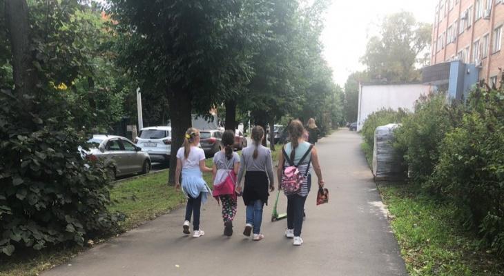 Платят власти: как задаром записать ребенка на секции и кружки в Ярославле