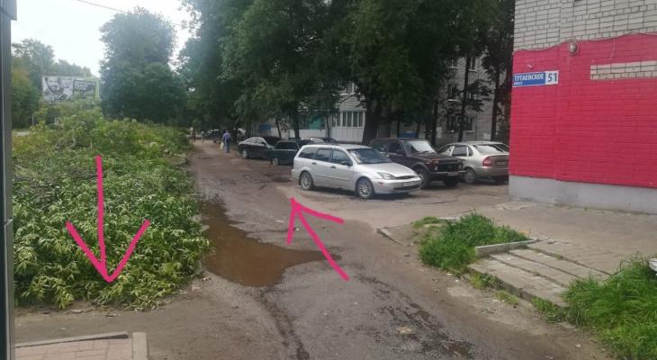 """""""Из подъезда сразу на дорогу"""": в Ярославле ради  автомагистрали вырубают деревья"""