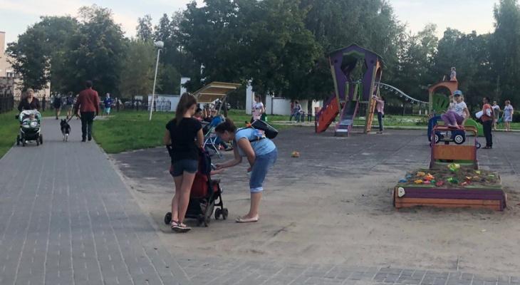 """""""Виноваты все, кроме нее"""": ярославцы обвинили мать укушенной собакой малышки"""