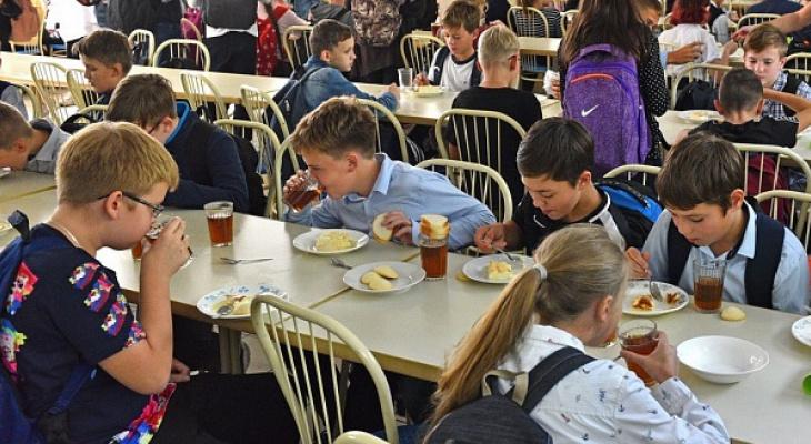 Новые цены, меню и требования: все об изменениях в школьном питании Ярославля