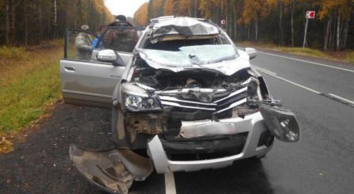 Чудовище выскочило на дорогу: водитель чудом остался жив в странном ДТП под Ярославлем