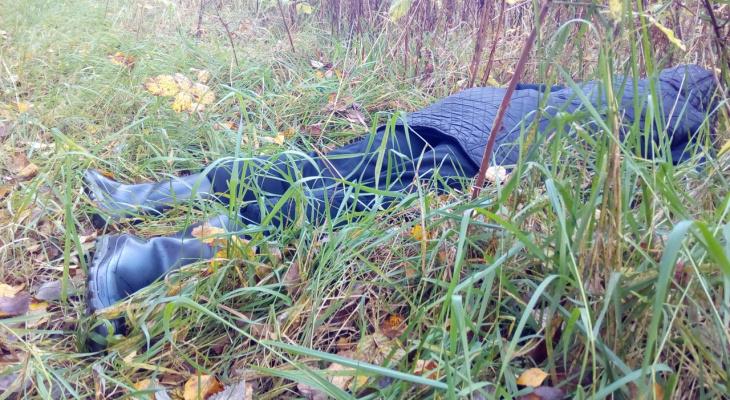 Месть в лесу: сосед выследил и изощренно убил ярославну