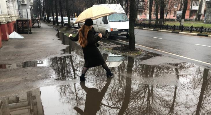 """""""Желтый уровень опасности"""": в Ярославле  объявили об погодном коллапсе"""