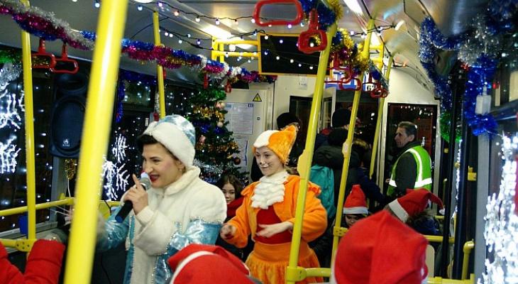 «Волшебный троллейбус» в Ярославле: адреса касс и цена билета