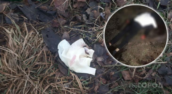 Умер на детской площадке: страшные детали убийства охранника в Ярославле