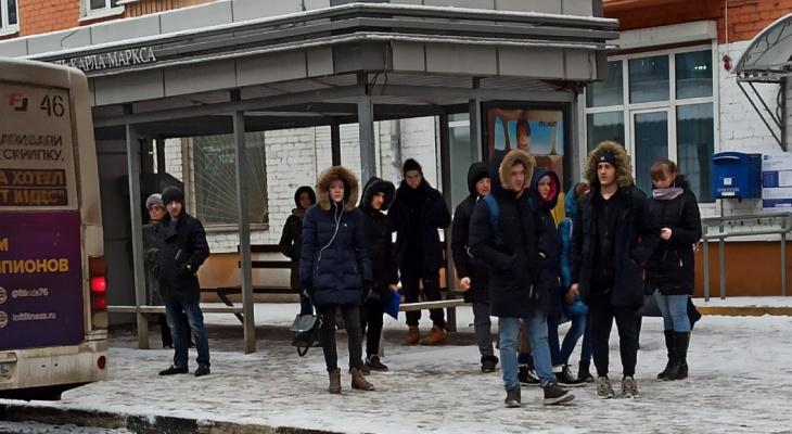 """""""Заставили платить наличными"""": ярославцы высмеяли """"подарок"""" властей студентам"""
