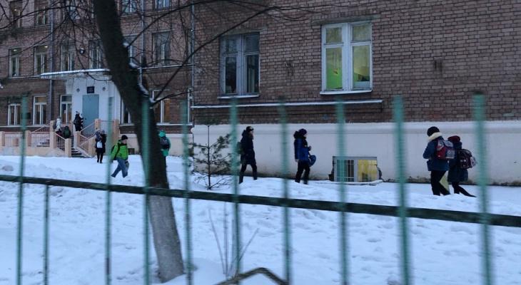 Особый график: какие каникулы устроят школьникам в Ярославле в майские праздники
