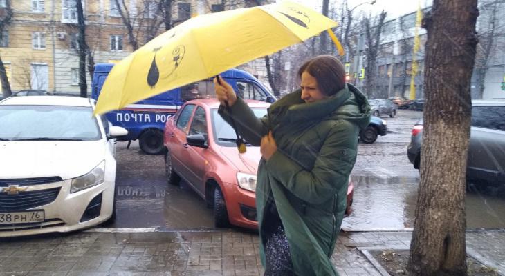 Это новая штормовая аномалия: синоптики о мегациклоне в Ярославле