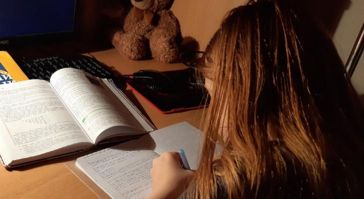 Язык качкам не нужен: родители обвинили учителя в гноблении учеников в Ярославле