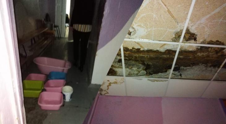 Везде грибок и плесень: региональный департамент образования о состоянии детского сада в Рыбинске