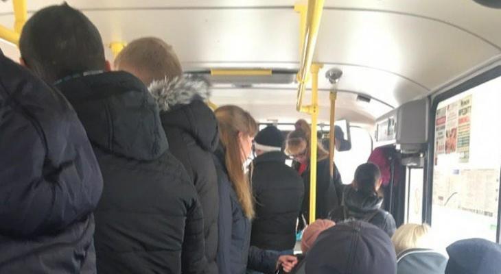 """""""Дали 1200 баксов и сиди дома"""": ярославца возмутила жуткая поездка в маршрутке"""
