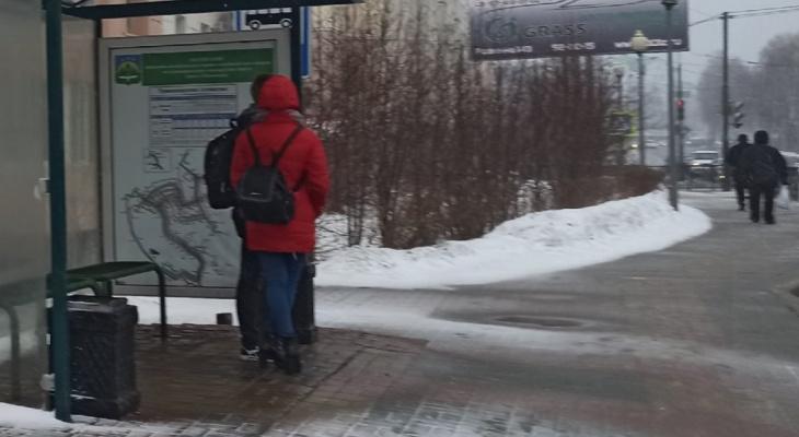 Общественный транспорт Ярославля сокращает маршруты: расписание и телефоны