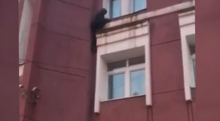 """""""Замри и не двигайся"""": в ярославле паркурщик застрял между этажами. Видео"""