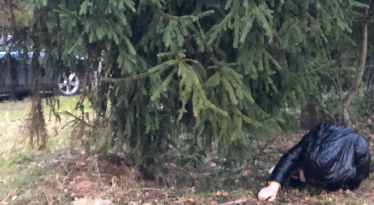 В Ярославле погиб мужчина: где нашли труп