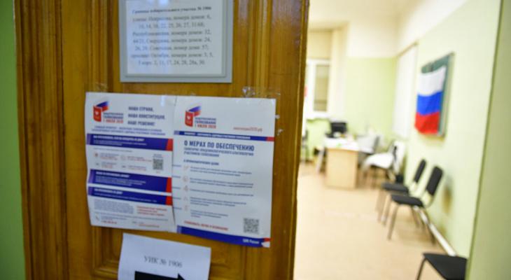 Как будем голосовать по поправкам в Конституцию: Ленинский район Ярославля