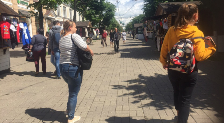 Как будем голосовать по поправкам в Конституцию: Дзержинский район Ярославля