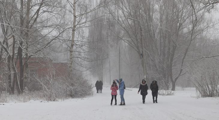 Холода, каких не было давно: какой будет зима 2020-21