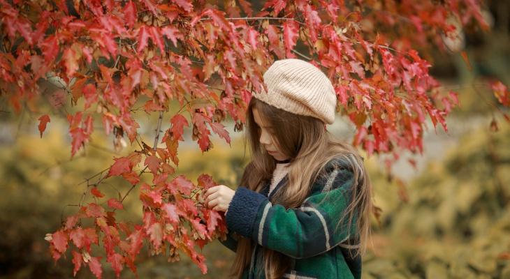 Аномально теплая осень ждет ярославцев: что пообещали