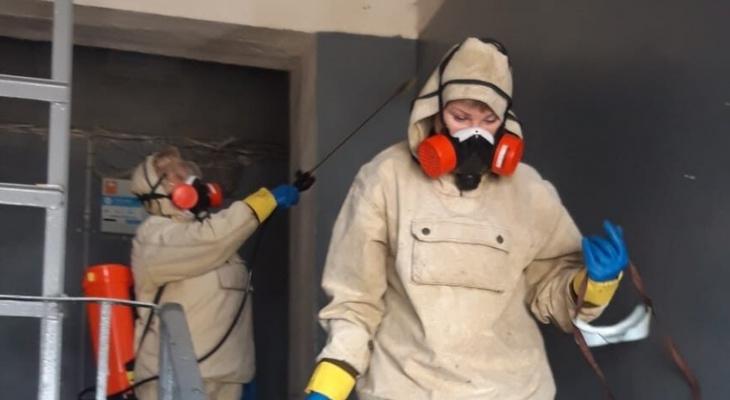 Будет или нет вторая волна коронавируса, сообщили россиянам