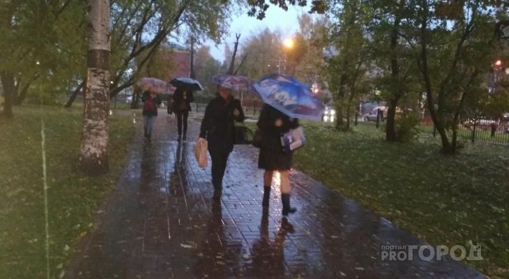 Сентябрь пришел: о сильном похолодании в Ярославле сообщили синоптики
