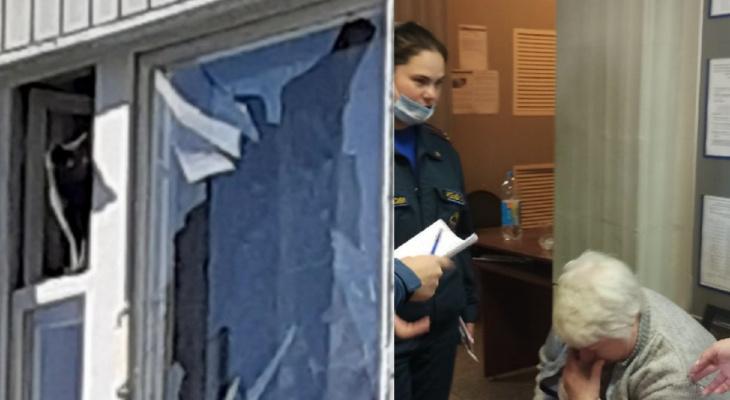 Коты и собаки оказались в заложниках разрушенного дома на Батова: что с ними
