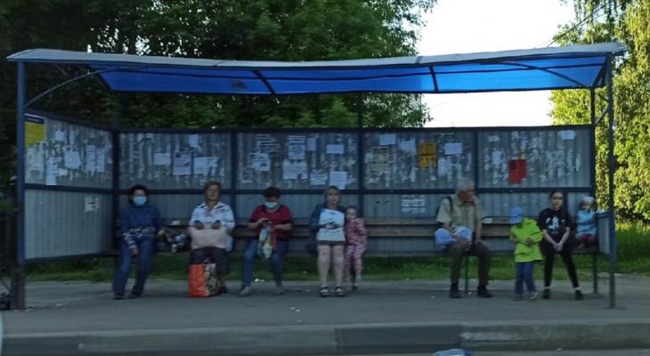 «Деньги копили на лечение»: мать с больным ребенком обокрали на остановке в Ярославле