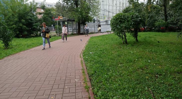 Ждите заморозков: синоптики огорошили ярославцев