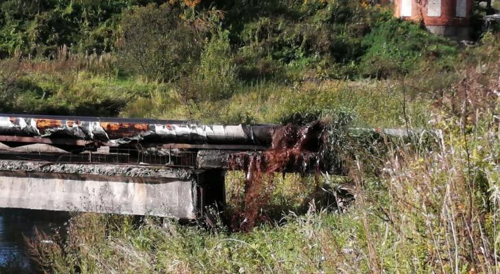 Вода с душком: опасные нечистоты попали в реку в Ярославской области