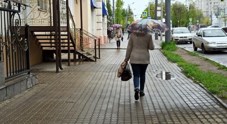 Заморозки охватывают новые территории: когда ждать ярославцам