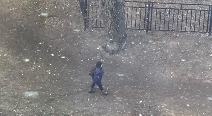 Снег выпадет на этой неделе надолго: синоптики удивили ярославцев