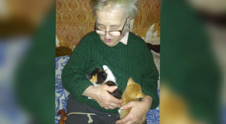 У погибшей в ковид-госпитале ярославны остались восемь кошек