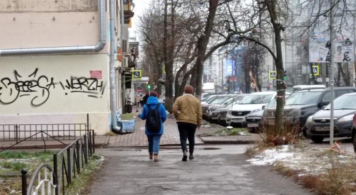 Выборы онлайн: ярославцы назвали имя лучшего мэра