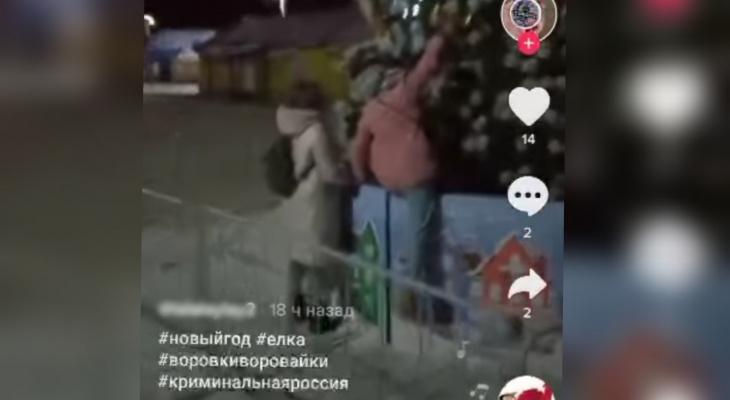 В Ярославле подростки ограбили главную елку и сняли на видео