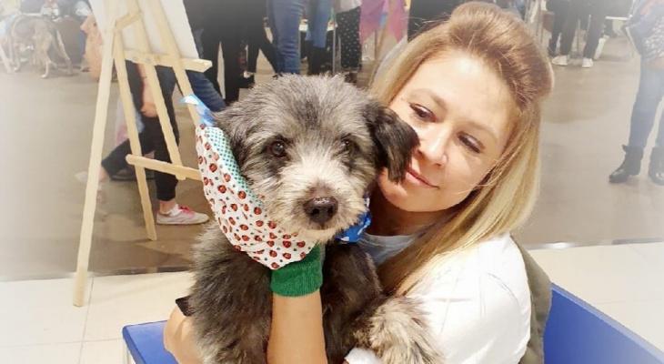 «Такая молодая»: в Ярославле умерла известная зоозащитница