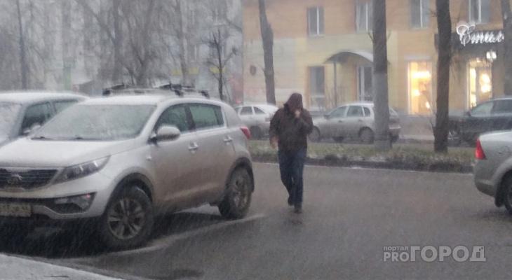 Снежный шторм в Ярославской области: спасатели назвали точное время