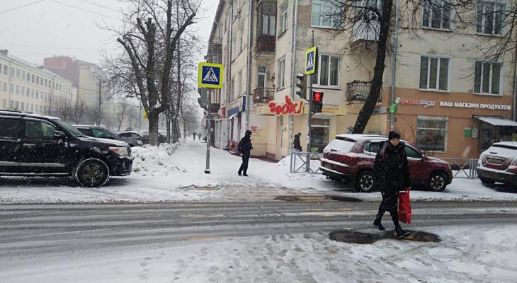 МЧС предупредили ярославцев о метели и сильном снегопаде: когда ожидать