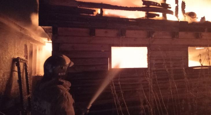 В страшном пожаре под Ярославлем погибли 20 животных: что случилось и где