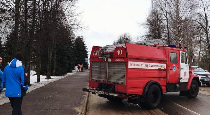 Волна минирований: кого зацепило в Ярославской области